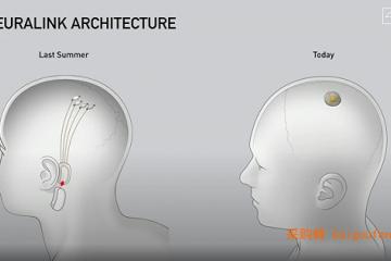 马斯克发布脑机接口重大突破:蓝牙连接,一小时植入,人体实验在即