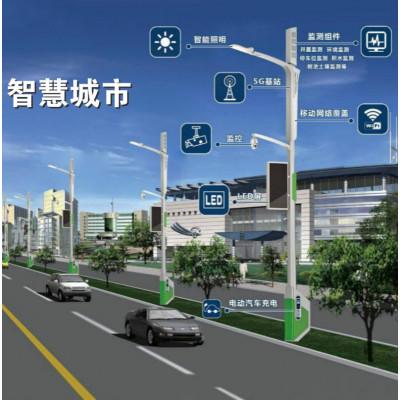 智慧路灯 智慧灯杆 智慧城市 充电桩灯杆含平台软件6米7米8米定制