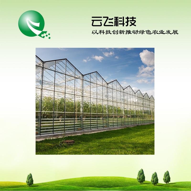 农业大棚智能监控系统厂家售后更完善_河南云飞科技